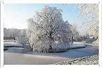 ツリー霜池冷凍氷は冬ウィロー61264表面のティンサイン 金属看板 ポスター / Tin Sign Metal Poster of Tree Hoarfrost Pond Frozen Ice Surface Winter Willow 61264