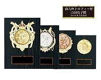[レーザー彫刻名入れ] GOLD SHACHI 優勝楯 KV1614 Cサイズ(H-3) 【水泳】 銀