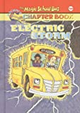 Electric Storm (Magic School Bus Science Chapter Books (Pb))