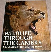 Wild Life Through the Camera