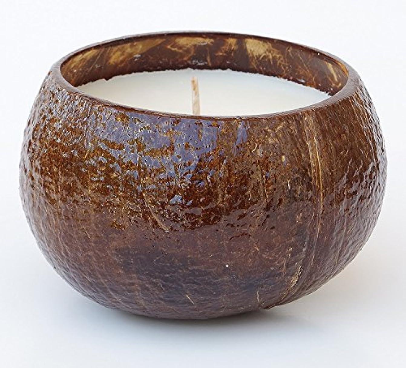 ステープルダウンタウン平凡ハワイアンCandle & Bath – プルメリア香りつきSoy Candle in Realココナッツシェル、16オンス、ハンド、Made in USA