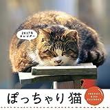 ぽっちゃり猫 CALENDAR 2017 壁掛け ([カレンダー])