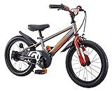 アイデス (ides) D-bikemaster (ディーバイクマスター) 18インチ 子ども用 キッズ 自転車 幼児車 BMXタイヤ 簡単着脱 1本スタンド+バスケット付きモデル シルバー シルバー 18インチ
