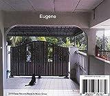 Eugene 画像