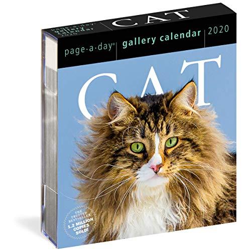 Cat Gallery 2020 Calendar