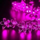 (リーダーテク)lederTEK ソーラー 防雨防水型 ピンク 桃花形電飾 イルミネーション LED 6.4m 50球 8点滅モデル クリスマス ガーデン ライト 新年 飾り付け