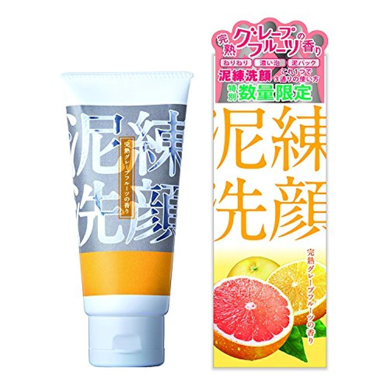 フリーステンション対処する泥練洗顔 完熟グレープフルーツの香り 120g【泥 洗顔 6種の泥で 黒ずみ 毛穴 洗浄 3つの使い方】
