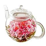 誕生日 お祝い ギフト ティーポット お花のつぼみ (Amazon出荷) 母の日 敬老の日 工芸茶