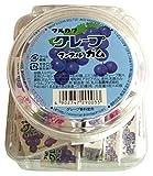 丸川製菓  容器入りグレープマーブルガム  6粒×40個
