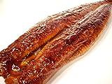 うなぎ蒲焼 ふっくら炭火焼き 特大鰻 2尾 蒲焼のタレ&山椒付き 約250gサイズ 2本 丑の日