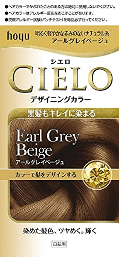 鍔盆つぶやきホーユー シエロ デザイニングカラー (アールグレイベージュ)×6個