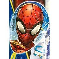 Spiderman facekite 20