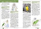 大型インコ完全飼育: 飼育、接し方、品種、健康管理のことがよくわかる (PERFECT PET OWNER'S GUIDES) 画像