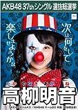 【高柳明音】ラブラドール・レトリバー AKB48 37thシングル選抜総選挙 劇場盤限定ポスター風生写真 SKE48チームK2NMB48チームB2