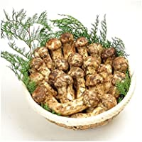 秋の味覚を先どり 中国産 つぼみ 松茸 すだち付き 1kg箱