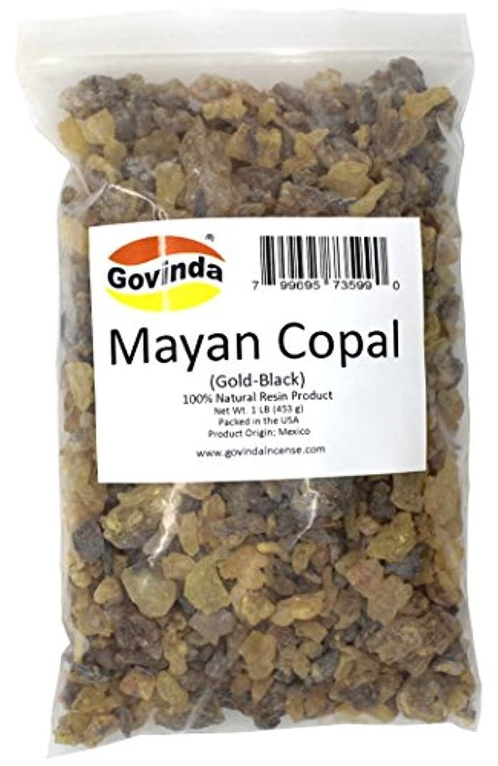 探す薄汚い防腐剤Govinda – マヤCopal ( gold-black ) Incense樹脂1 lb