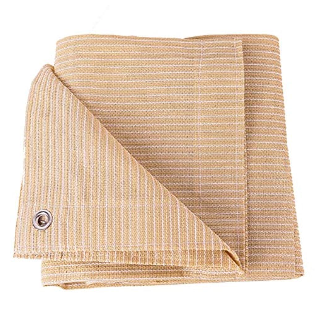 不当ふくろう切断するZHANWEI オーニング シェード遮光ネット 屋外の フラワーズ 断熱 日焼け止め 厚く、 カスタマイズ可能なサイズ (Color : Beige, Size : 1x3m)