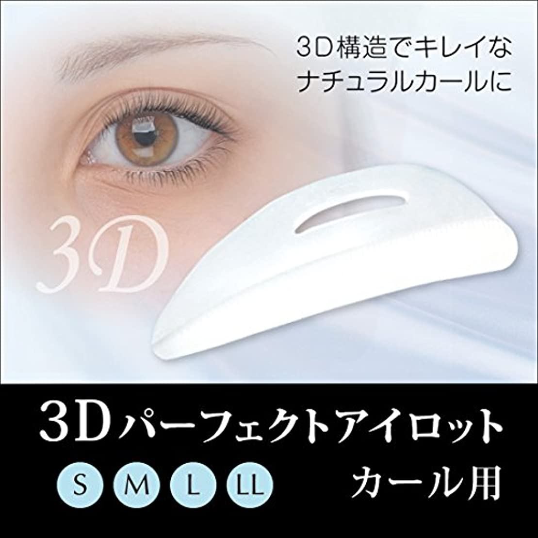 掃く子音比較的3Dパーフェクトアイロット カール用 (4サイズセット)