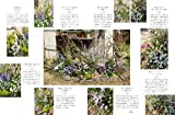 小花図鑑 画像