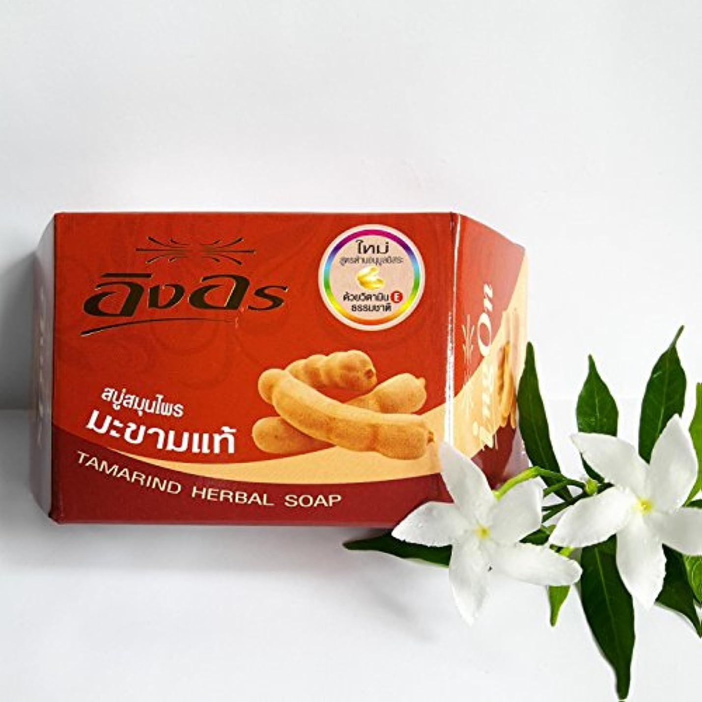 知覚するワイプ珍味イングオン イングオンソープ タマリンド 85g
