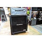 Guyatone / Flip5000FCX CAB SET