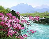 Wincy Shop Landscape Oil Painting Diy Oil Painting Paint by Numbers for Home Decor (Wooden Framed with Gift Package, Pink Flowers River)