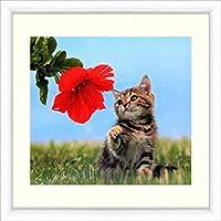『ハイビスカスと猫』オフセットによる複製