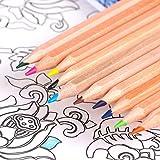 色鉛筆 12色画材セット 六角軸消せる色油性色鉛筆 オフィス用品 収納ケース付き