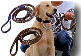 (LStage) レザー 中型犬用 リード 首輪セット / 選べる 3 カラー (ブラック)