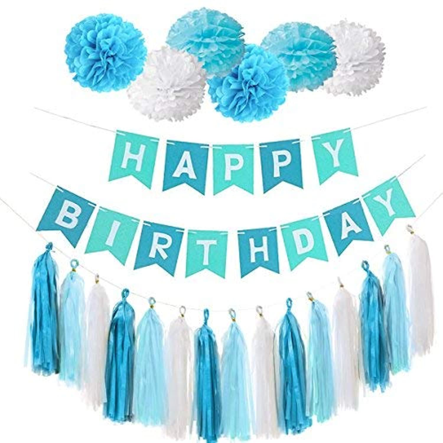 Happy Birthday Banner Flag Bunting - Set of Tissue Paper Pom Poms Flowers and Tassels For Birthday Party Decoration (Sky Blue Set) [並行輸入品]
