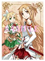 ソードアート・オンライン wondergoo 特典 B2 タペストリー アスナ リーファ インフィニティ・モーメント SAO PSP