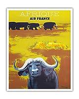 アフリカ - エールフランス - アフリカの野生動物 - ビンテージな航空会社のポスター によって作成された ポール・コリン c.1956 - アートポスター - 41cm x 51cm