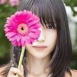 ファインダーの向こう (初回限定盤)(DVD付)