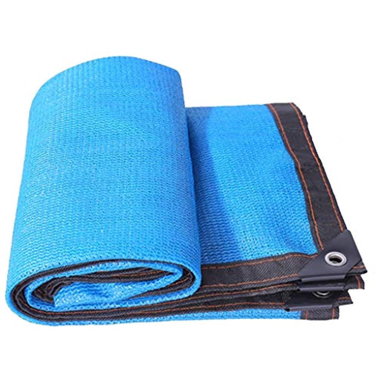 解読する洗練された幻想的パーゴラカバーのためのグロメットが付いている85%の陰の布の青い優れた網の陰のパネル屋外、裏庭、庭の花植物のためのおおいの日焼け止めの陰の布の網の網カバー (Size : 13.1×49.4ft)