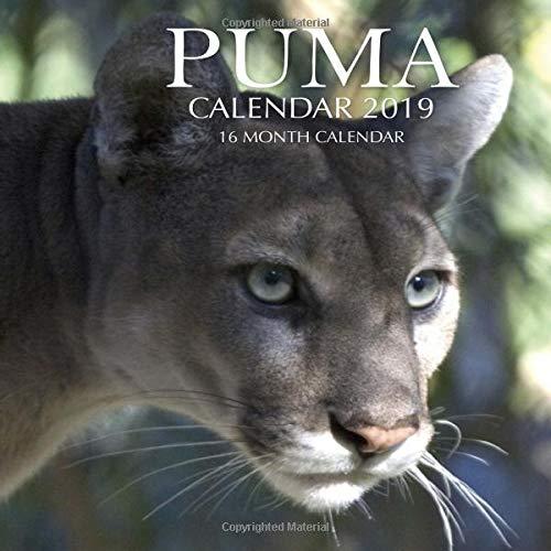 Puma Calendar 2019: 16 Month C...
