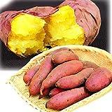 国華園 さつまいも 紅はるか 5kg 熊本産 訳あり ご家庭用 徳用 べにはるか さつま芋 蜜芋