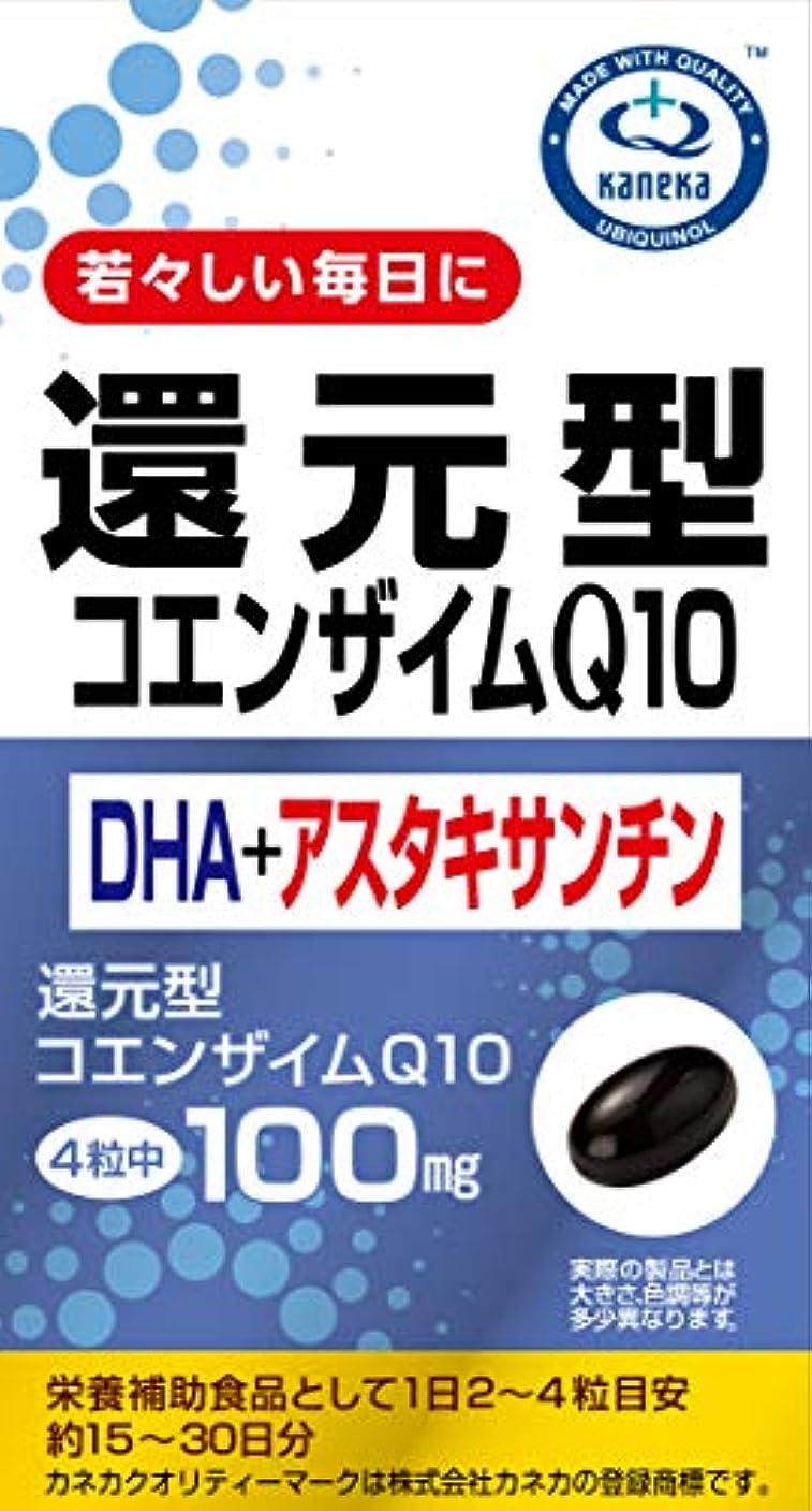 プレゼンター起きろ宇宙船ユニマットリケン コエンザイムQ10+DHA+アスタキサンチン 60粒