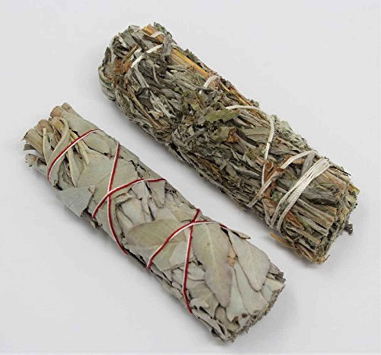 不利益精巧な年金カリフォルニアホワイトセージ、ブラックセージ( Mugwort ) Smudge Sticks 2 Pack