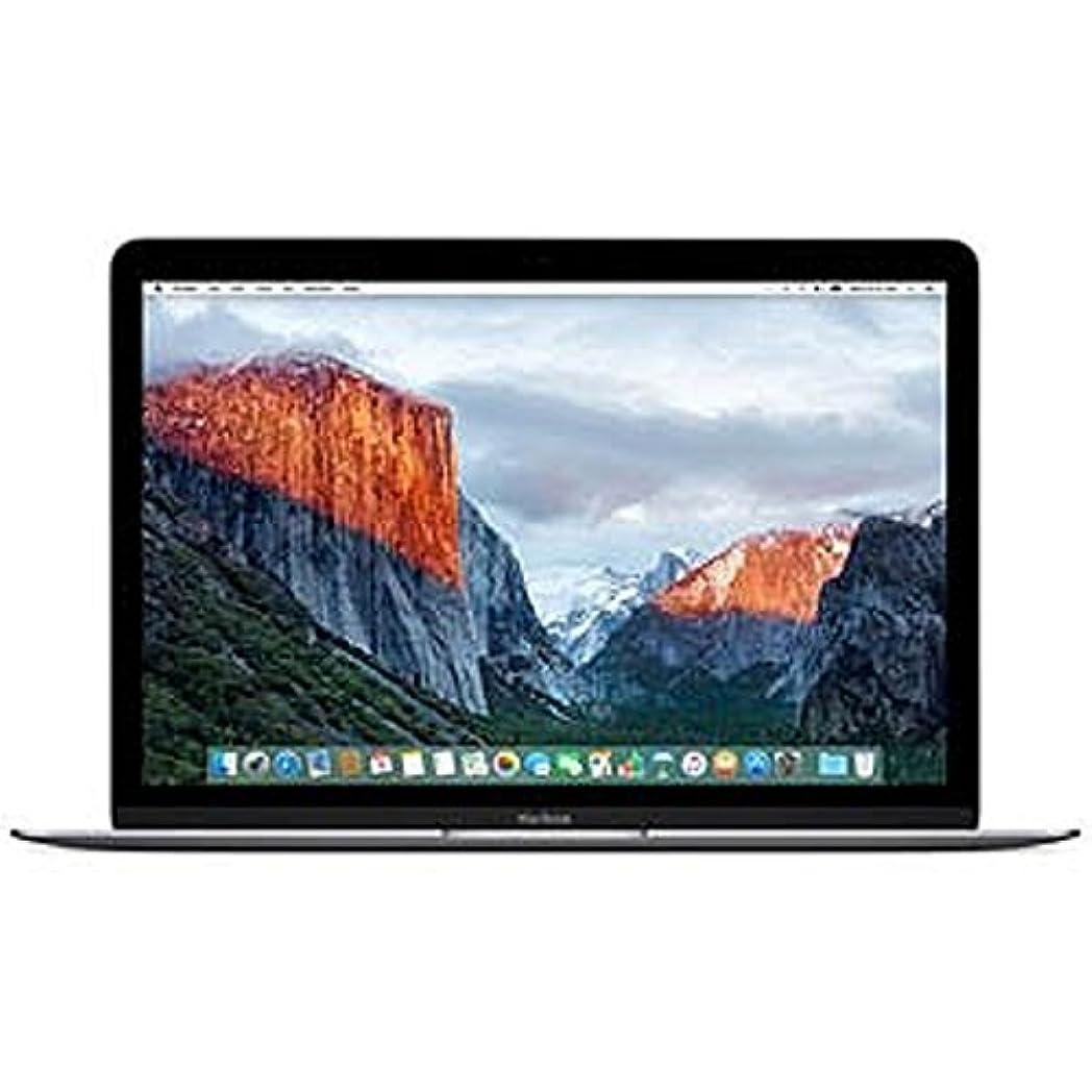 政府彼の藤色MacBook (12-inch/1.1GHz Dual Core Intel Core m3/256GB/8GB/802.11ac/USB-C/スペースグレイ)