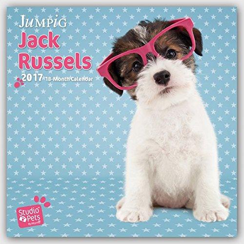 Just Jacks - Jack Russel Terrier 2017 - 18-Monatskalender: Original Myrna-Kalender