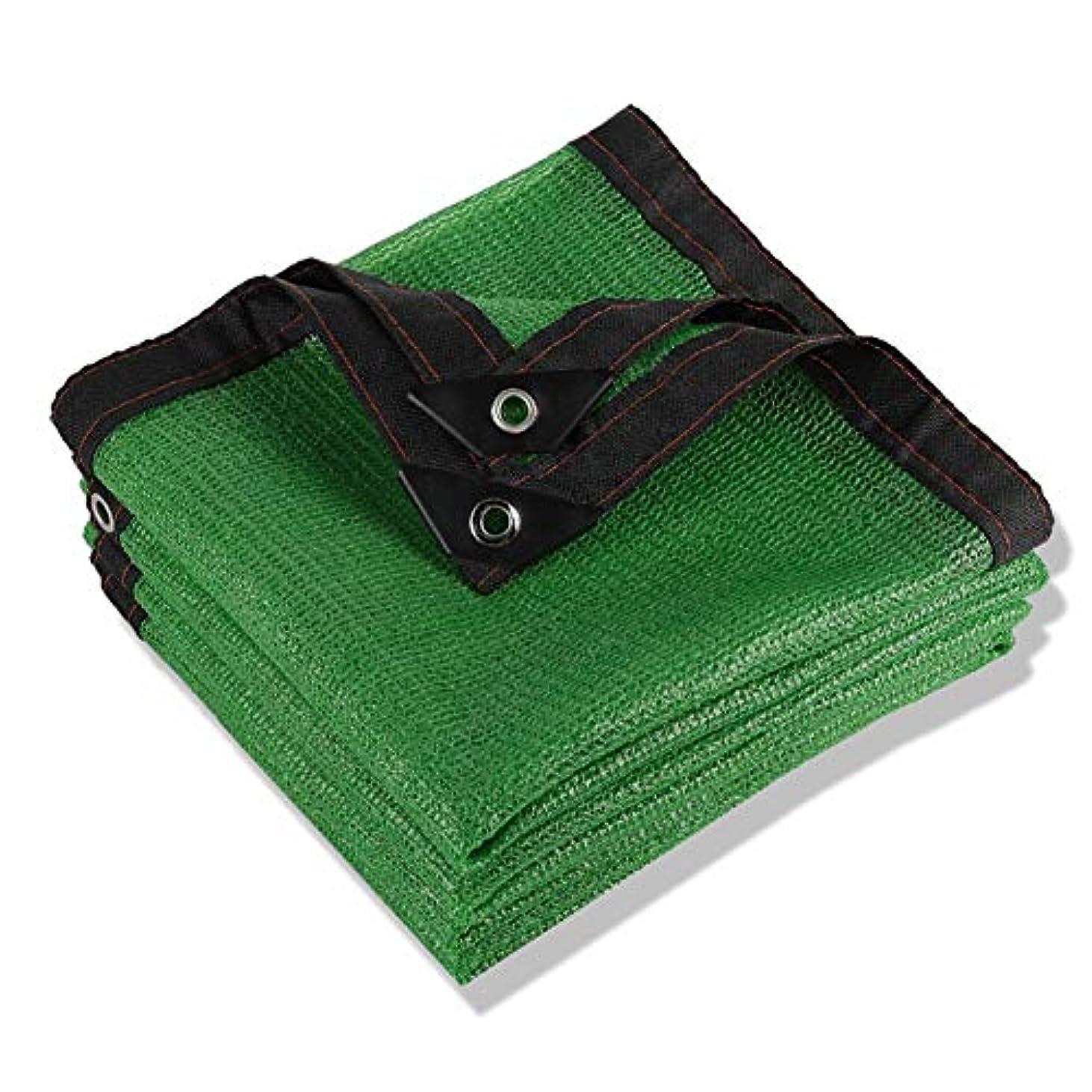費用キャンパスソロPENGFEI オーニングシェード遮光ネット 園芸 工場 断熱材 通気性 暗号化 複数のサイズ (Color : Green, Size : 2x4m)