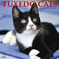 Just Tuxedo Cats 2019 Calendar