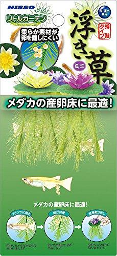 ニッソー リトルガーデン浮き草ミニ3種アソート NAP-524