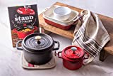 【Amazon.co.jp限定】ストウブ人気商品8点セット<レシピ本付き> ココットラウンドブラック20cm チェリー14cm 鍋敷き 食器3点 キッチンタオル レシピブック