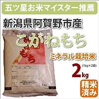 戸塚正商店 新米 新潟県阿賀野市産ミネラル栽培米 もち米「こがねもち」2kg 27年産 五つ星お米マイスター