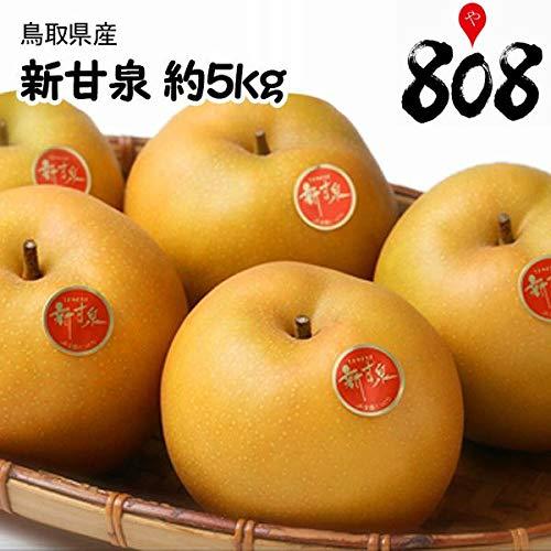 【鳥取県産】【翌日お届け】秀品 新甘泉 約5kg 梨 赤梨 大きさお任せ