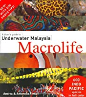 A Diver's Guide to Underwater Malaysia Macrolife