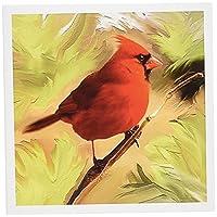 鳥–Red Cardinal–グリーティングカード Set of 12 Greeting Cards