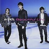 Beautiful Life(初回限定盤)(DVD付) 画像