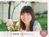 本橋麻里/カーリング 女子 BBM リアルヴィーナス 2011 レギュラー カード ベースボールマガジン